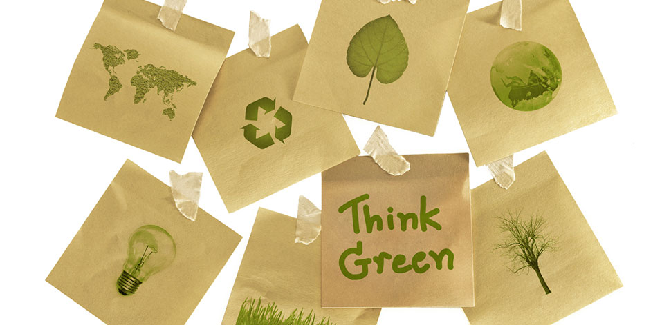 Course - Environmental Sustainability for Managers